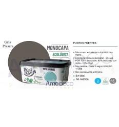 PINTURA MONOCAPA AL AGUA PARA INTERIORES ECOLOGICA Y MUY LAVABLE DE ACABADO MATE PAINT & GO TOLLENS